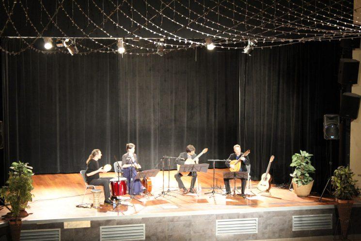 Concert et Atelier guitare avec Sébastien Llinares