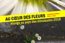 Au cœur des fleurs : spectacle scientifique