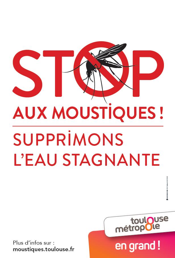 Campagne d'information : le moustique-tigre