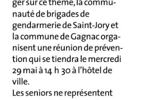 25 05 2019 Réunion Publique, Les Vols Au Préjudice Des Séniors