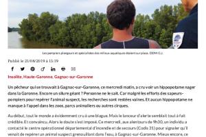 21 08 2019 Un Pêcheur Croit Voir Un Hippopotame P1